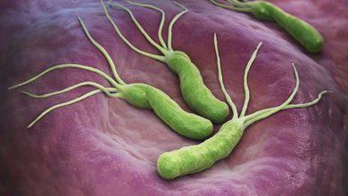 Photo of علاج جرثومة المعدة