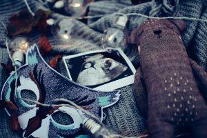 الحمل خارج الرخم