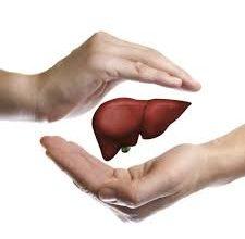 Photo of ما هو علاج تليف الكبد وتكلفة زراعتة