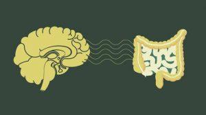 خلل الإشارات العصبية بين الجهاز الهضمي والدماغ