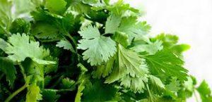 علاج حرقة المعدة بالأعشاب