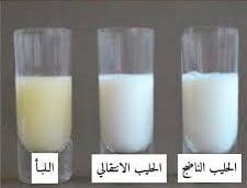 حليب الأم (اللبأ والحليب الناضج)